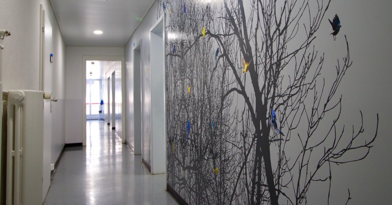 Projet «Birds» de Joelle Cabanne